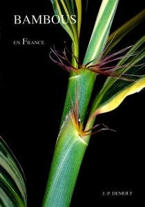 BambousEnFrance