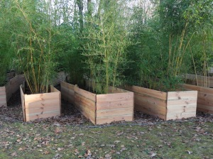 Pots protégés par bacs en bois et feuilles