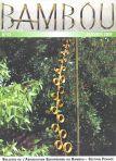 Bambou 53