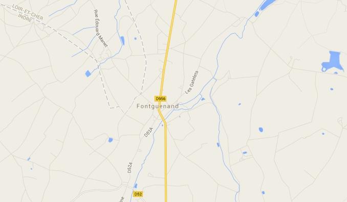 Vente bambousaie (Fontguenand, 36600 Valençay) (1/6)